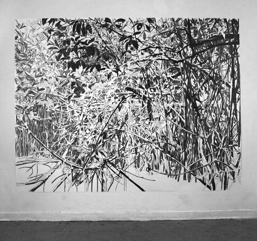 http://bettinaerzgraeber.de/files/gimgs/31_mangrovegrosswww.jpg